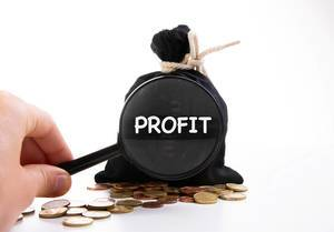 Zugeknoteter Geldsack hinter Kleingeld und der Aufschrift Profit, vergrößert dargestellt und einer Lupe