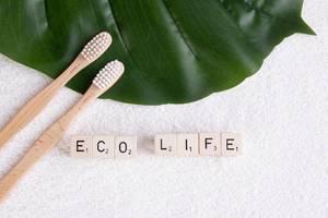 """Zwei Bambus-Zahnbürsten auf einem Tropenblatt, neben dem Text """"Eco Life"""" / Öko-Leben"""