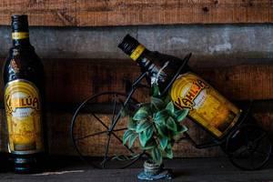 Zwei Flaschen Kahlua Kaffeelikör in Halterung vor einer Holzwand mit Mini Pflanze
