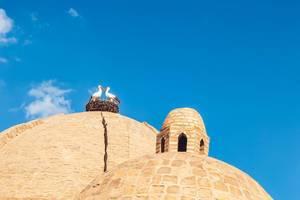 Zwei Störche im Nest vor blauem Himmel auf dem Dom von Toqi-Zargaron in Buchara, Usbekistan