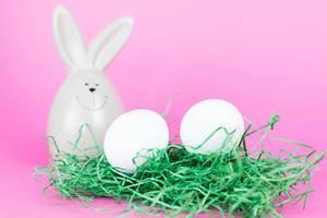 Zwei weiße Eier